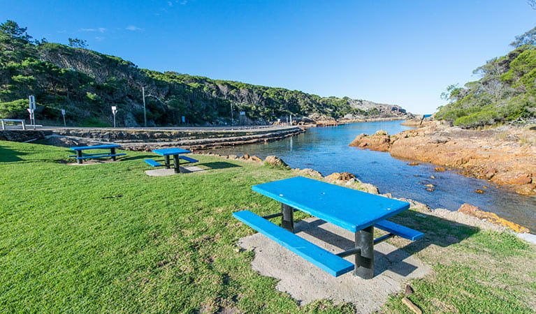 Kianinny Bay picnic area, Bournda National Park. Photo: John Spencer