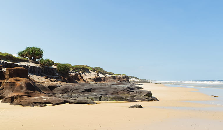 Black Rocks campground, Bundjalung National Park. Photo: Rob Cleary/Seen Australia