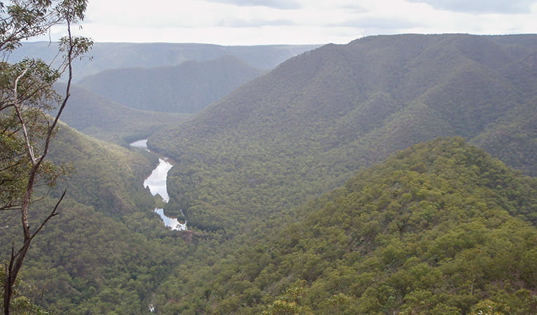 Shoalhaven Gorge, Bungonia National Park. Photo: OEH