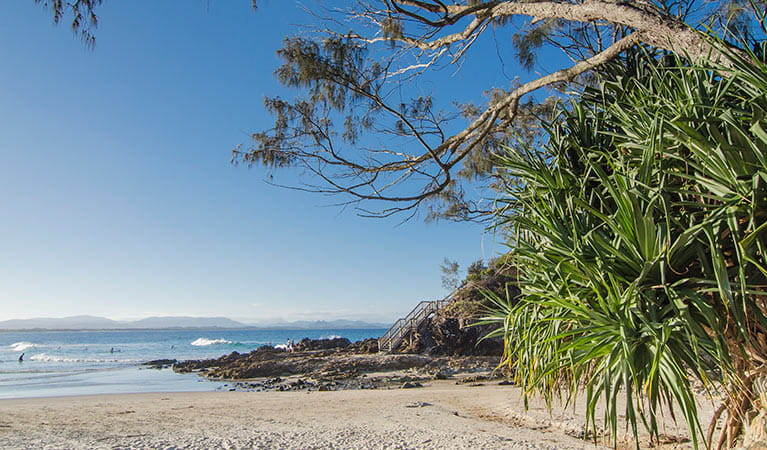 The Pass, Cape Byron State  Conservation Area. Photo: John Spencer