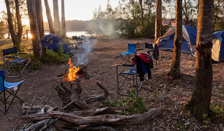 Camping in Red Gum campground, Clyde River National Park. Photo: Lucas Boyd
