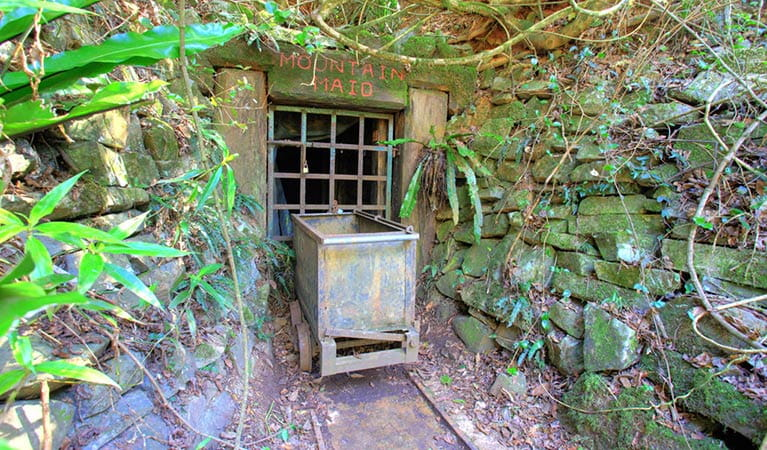 Abandoned gold mine relics, Copeland Tops State Conservation Area. Photo: Brent Mail