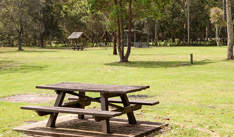 Davidson picnic area, Garigal National Park. Photo: Shaun Sursok