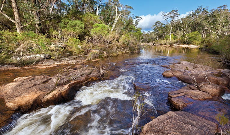 Little Dandahra Creek, Gilbraltar Range National Park. Photo: Rob Cleary