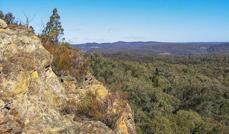 Views from Lees Pinch lookout, Goulburn River National Park. Photo: OEH