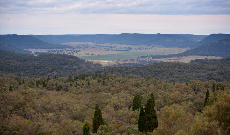 Lees Pinch lookout, Goulburn River National Park. Photo: Nick Cubbin