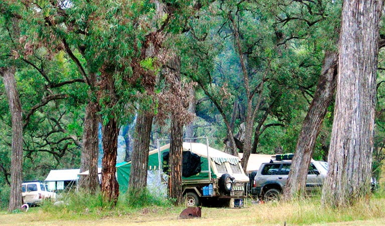 Camping in Goulburn River National Park. Photo: OEH
