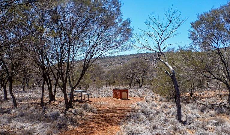 Bennetts Gorge picnic area, Gundabooka National Park. Photo: John Good