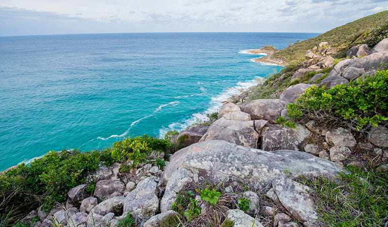 Little Bay to Smoky Cape walk, Hat Head National Park. Photo: John Spencer