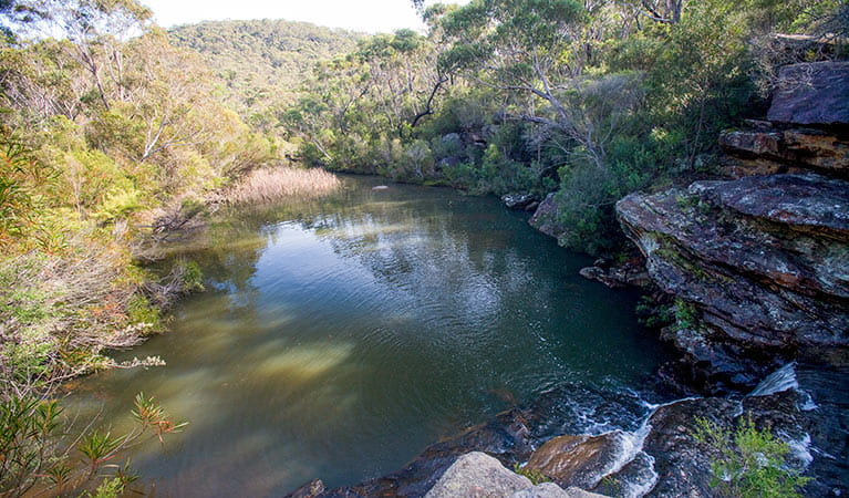 Kingfisher pool, Heathcote National Park. Photo: Nick Cubbin