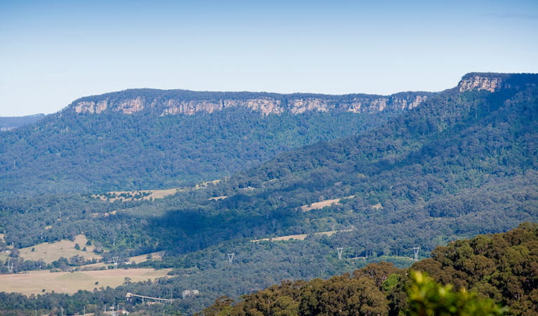 Mount Kembla lookout, Illawarra Escarpment State Conservation Area. Photo: Nick Cubbin
