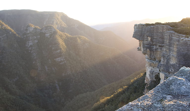Kanangra Boyd lookout, Kanangra Boyd National Park. Photo: Simoe Cottrell