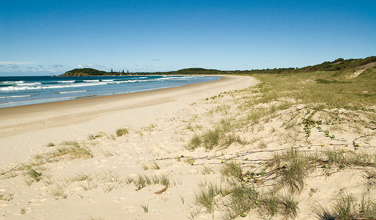Plomer Beach, Limeburners Creek National Park. Photo: Michael van Ewijk