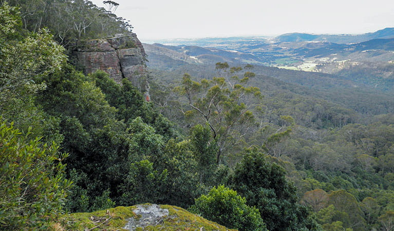 View of Macquarie Pass National Park. Photo:  T Moody