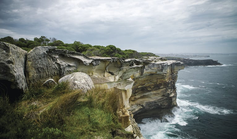 Cliffs and coastline, Malabar Headland National Park. Photo: C Weston/OEH