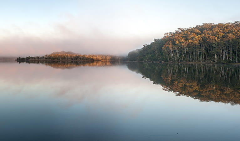 Meroo Lake, Meroo Lake National Park. Photo: Michael van Ewijk