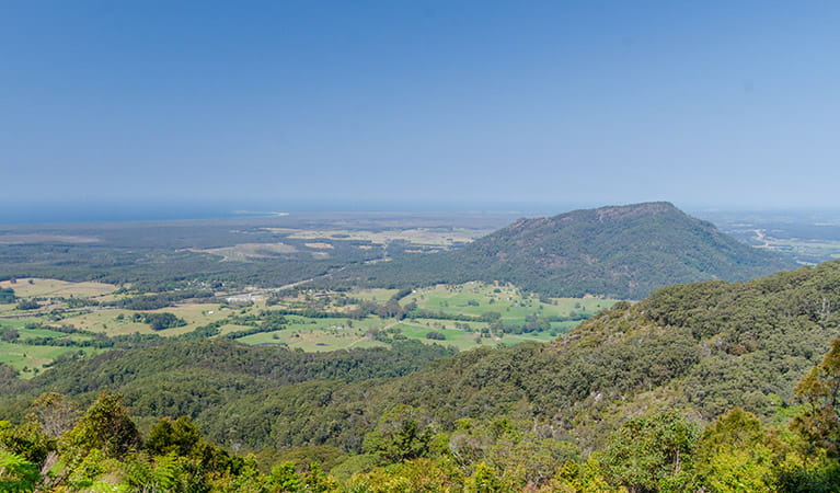 View of Middle Brother National Park. Photo: John Spencer