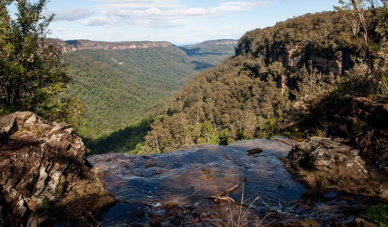 West Rim walking track, Morton National Park. Photo: Michael Van Ewijk