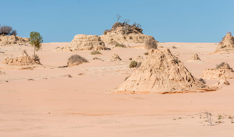 Walls of China, Mungo National Park. Photo: John Spencer
