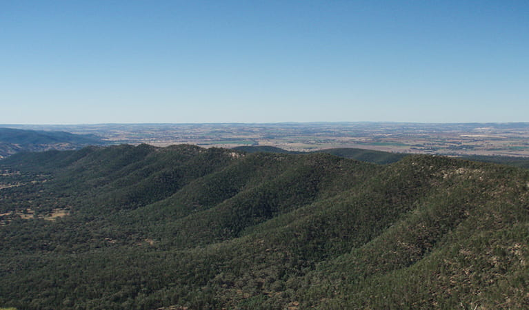 Nangar lookout, Nangar National Park. Photo: A Lavender