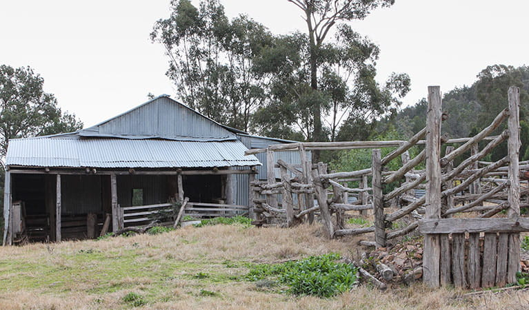Dripping Rock shearing shed, Nangar National Park. Photo: OEH