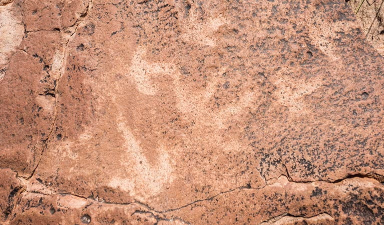 Aboriginal rock engravings in Paroo Darling National Park. Photo: John Spencer