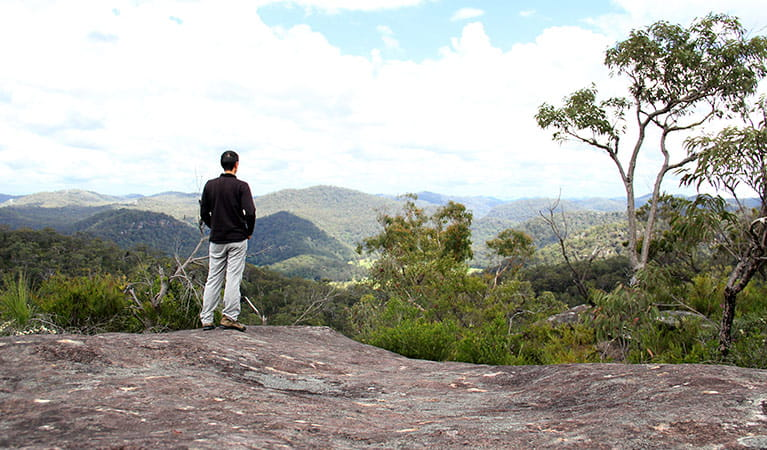 A person enjoying the view from a lookout, Popran National Park. Photo: John Yurasek
