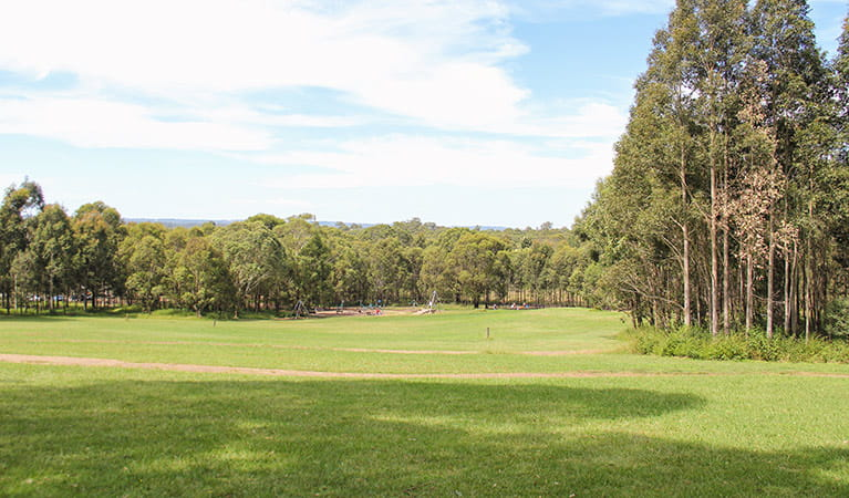 Ironbark Ridge, Rouse Hill Regional Park. Photo: John Yurasek