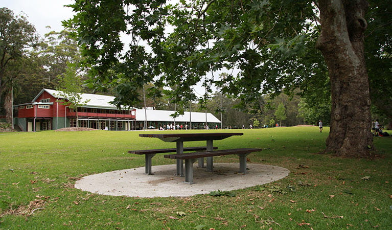 Audley Visitor Centre, Royal National Park. Photo: Andy Richards