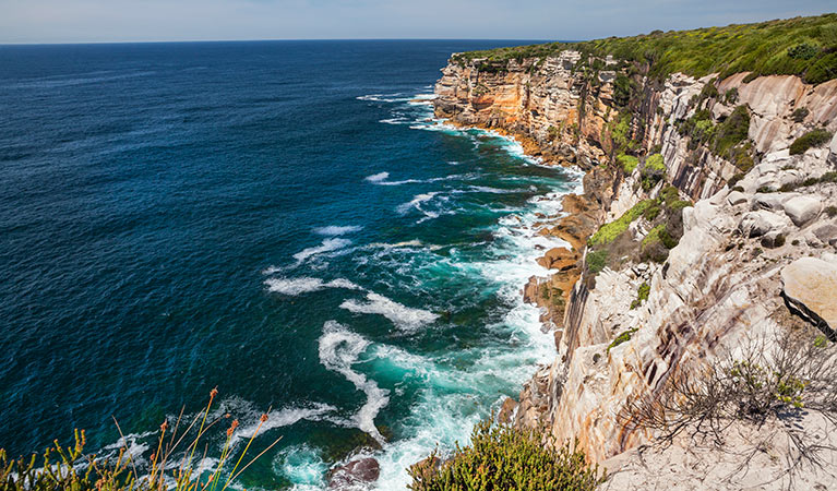 Rocky cliffs dropping off into the ocean, Royal National Park. Photo: David Finnegan