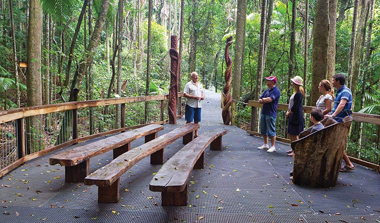 Rainforest boardwalk, Sea Acres National Park. Photo: Rob Cleary
