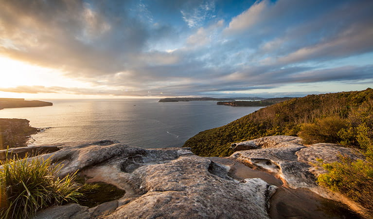 Arabanoo lookout at Dobroyd Head, Sydney Harbour National Park. Photo: David Finnegan