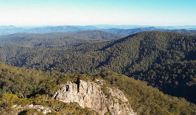 Rowleys Rock lookout, Tapin Tops National Park. Photo: Kevin Carter