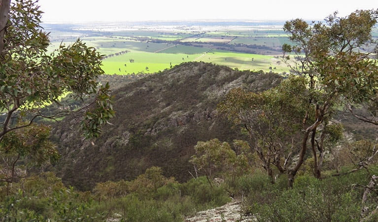The Rock lookout, The Rock Nature Reserve. Photo: A Lavender