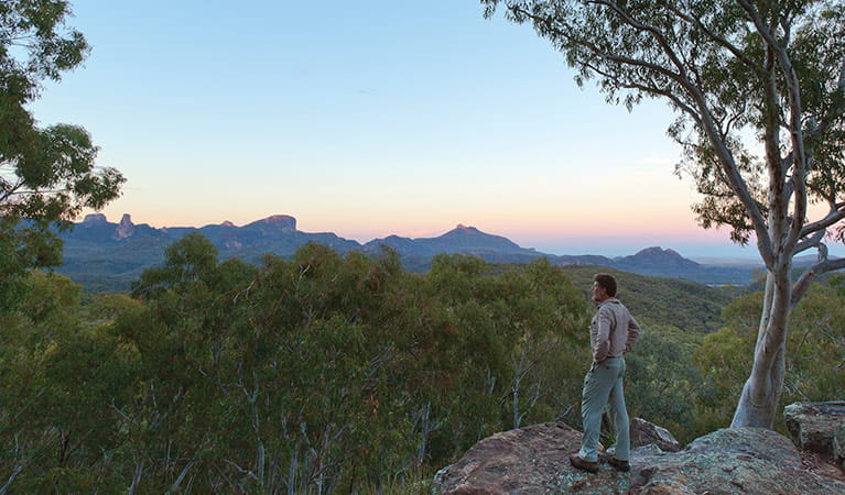 Whitegum lookout, Warrumbungle National Park. Photo: Rob Cleary