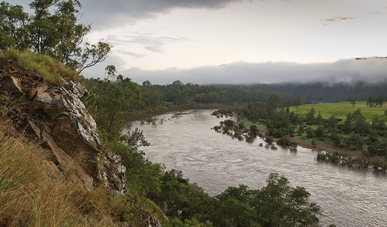 Mann River, Washpool National Park. Photo: Rob Cleary