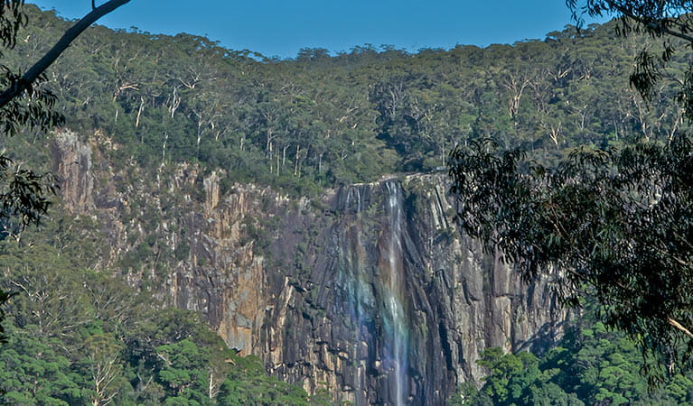 Waterfall, Whian Whian National Park. Photo: John Spencer