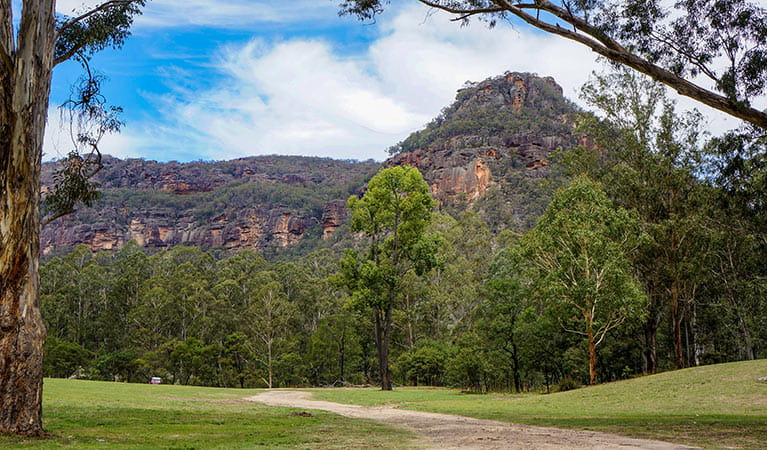 Newnes campground, Wollemi National Park Photo: Steve Alton