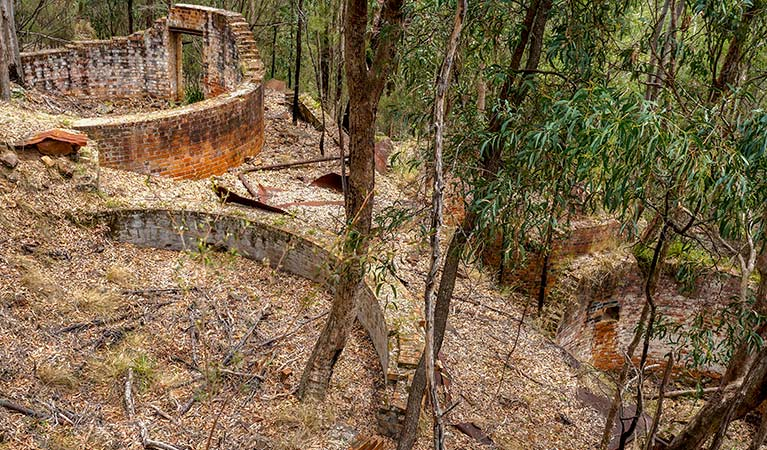 Newnes industrial ruins walk, Wollemi National Park. Photo: Steve Alton