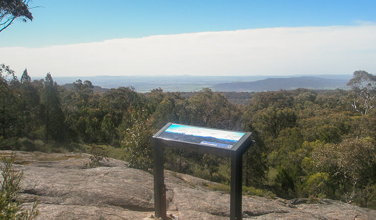 Norths lookout, Woomargama National Park. Photo: D Pearce