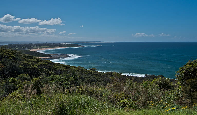 Crackneck lookout, Wyrrabalong National Park. Photo: John Spencer