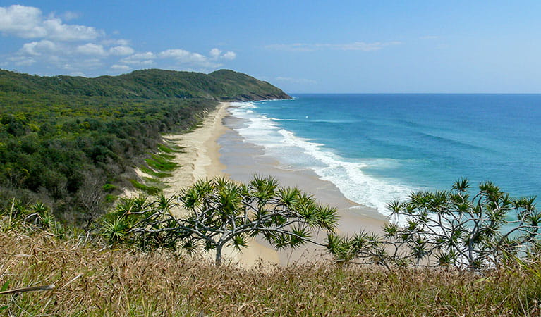 Beach and ocean coastline in Yarriabini National Park. Photo: Shane Ruming