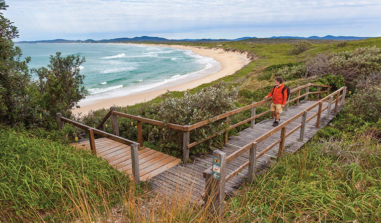 Wilsons Headland walk, Yuraygir National Park. Photo: Rob Cleary