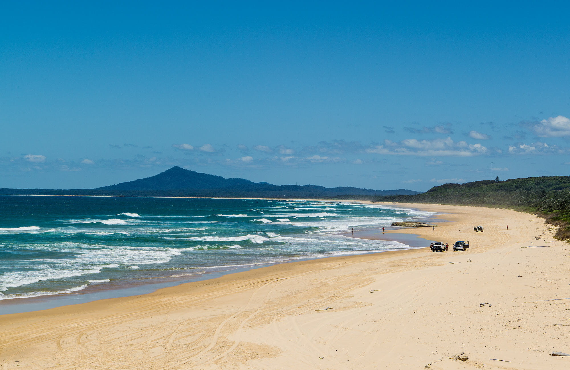 Bongil Beach, Bongil Bongil National Park. Photo: Rob Cleary/Seen Australia