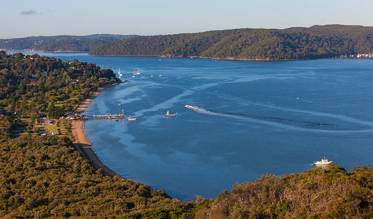 Barrenjoey Lighthouse track, Ku-ring-gai Chase National Park. Photo: D Finnegan
