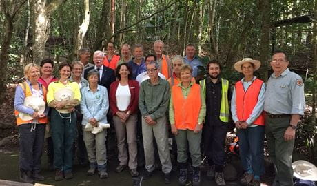 Volunteers canopy gap weeding in Minnamurra Rainforest, Budderoo National Park. Photo: Peter Kennedy