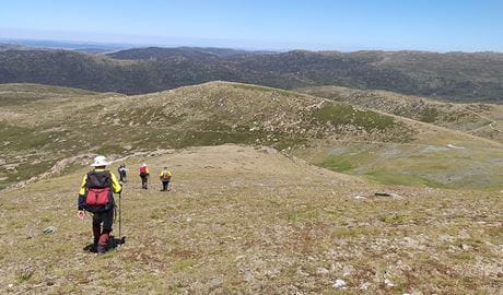 Volunteers return at the end of a day of outdoor work in Kosciuszko National Park. Photo: Rebecca Mooy © Rebecca Mooy/NPWS