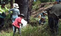 Volunteers participate in bush regeneration day, Lane Cove National Park. Photo: Michele Cooper/OEH