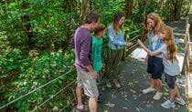 Sea Acres Rainforest Centre Discovery guides, Sea Acres National Park. Photo: David Finnegan