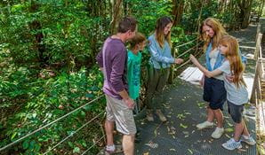 Volunteer at Sea Acres Rainforest Centre
